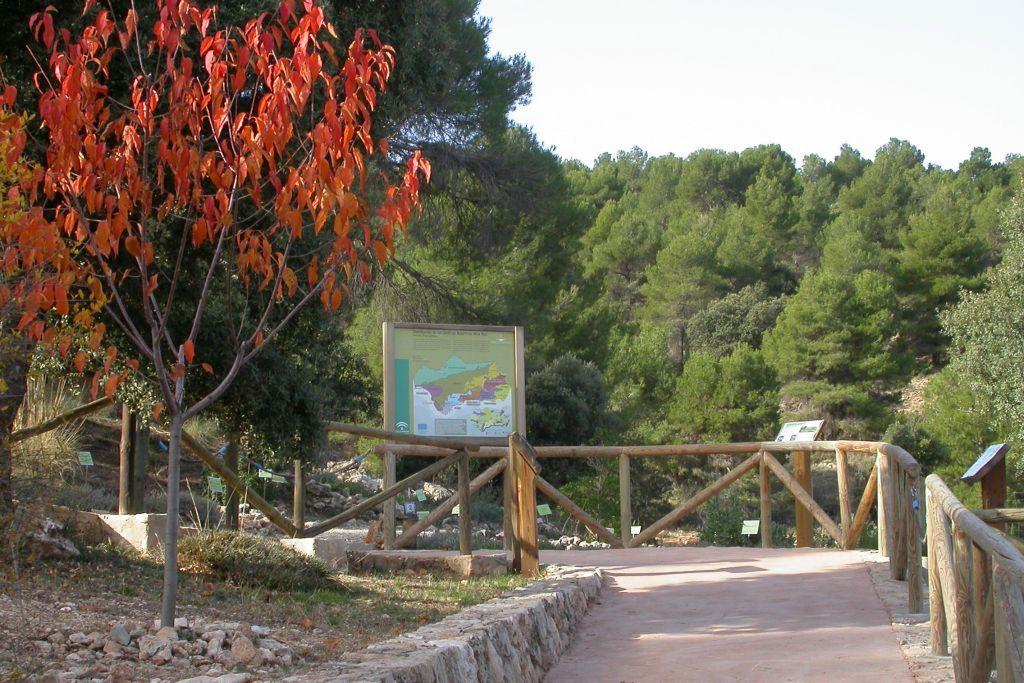 Visita al Jardín Botánico 'Umbría de la Virgen'