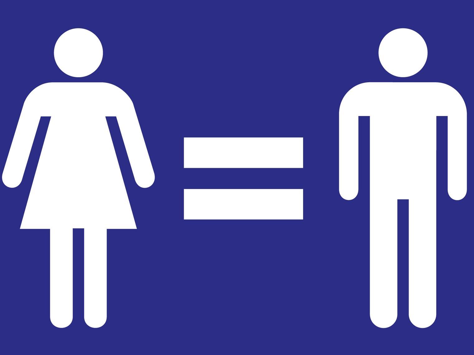 ley 03 07 22 marzo igualdad: